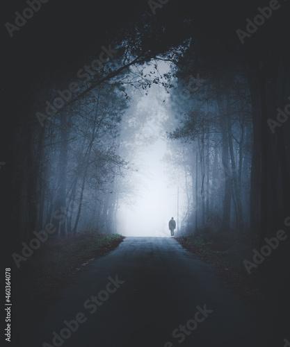 Canvas Print Persona solitaria paseando en la niebla