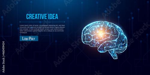 Fototapeta Human brain