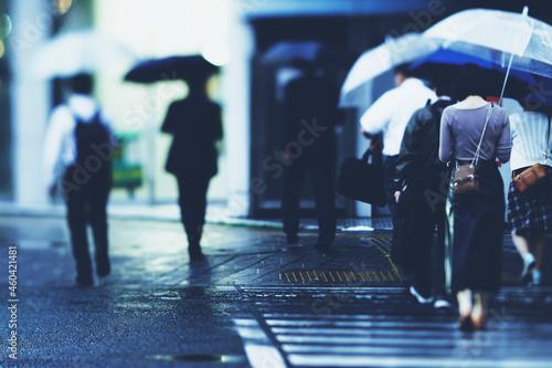 Canvas Print 雨の日の横断歩道