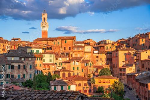 Murais de parede Siena, Tuscany, Italy - Torre del Mangia, sunset light