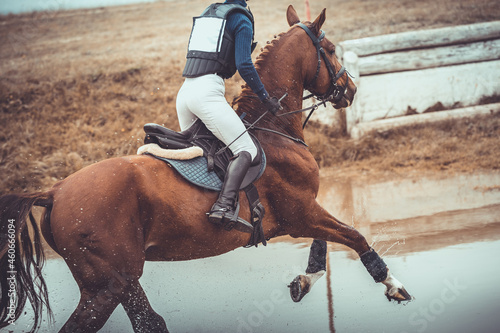 closeup portrait of rider and horse galloping during eventing cross country comp Fototapet