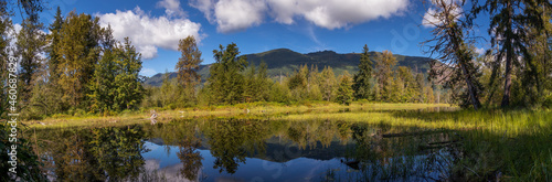 Panorama of Pond and Moutains in Western Washington