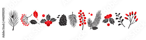 Fotografie, Tablou Christmas vector plants, holly winter decor, christmas tree, pine, leaves branches, holiday set isolated on white background