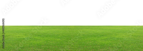 Canvastavla Green grass field isolated on white background, for montage product display