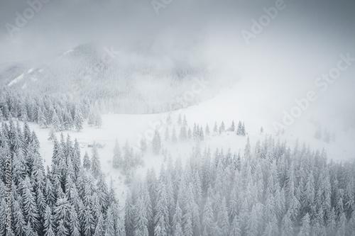 Splendid winter scene from a bird's eye view.