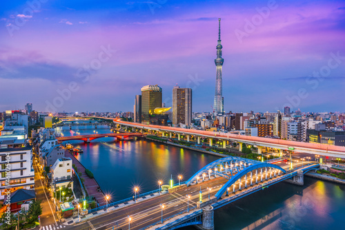 Murais de parede Tokyo Japan Skyline