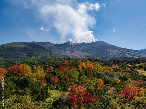Photo 望岳台の紅葉と噴煙