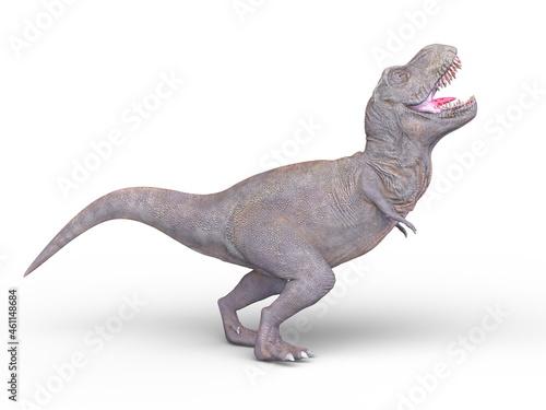 Fotografija 恐竜