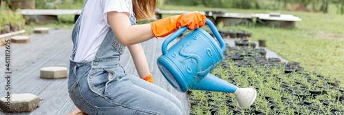 Fotografia, Obraz Female gardener concept a female horticulturist using the blue watering can to g