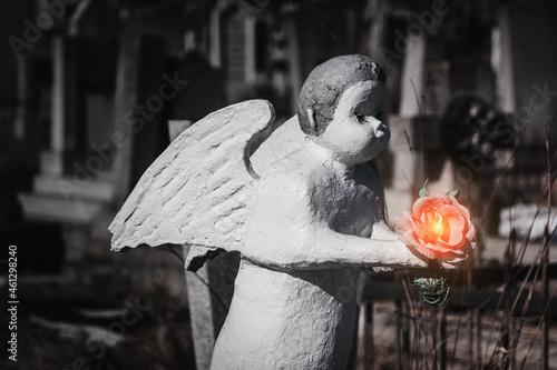 Fotografie, Obraz Little stone angel