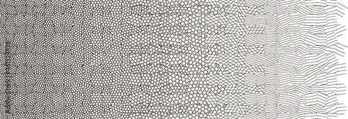 Valokuva [漫画用素材] 3カケから1カケに変化するカケアミのグラデーション (ver.CS)