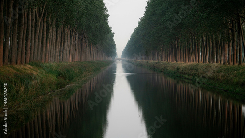 Tela canal avenue with trees in the morning