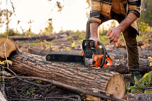 Murais de parede unrecognizable lumberman turn on Chainsaw for cutting wood