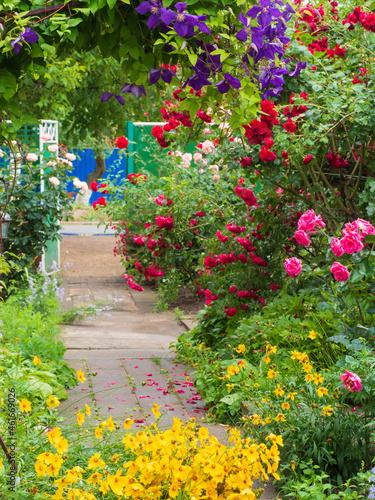 Fotografie, Obraz The Garden of Eden