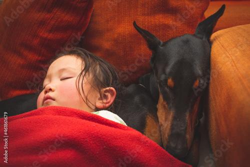 一緒に眠る少女とドーベルマン Fototapete