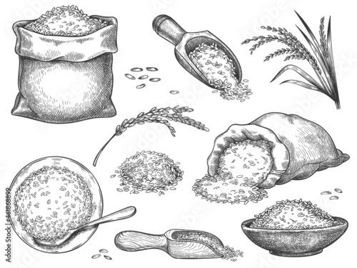 Fototapeta Hand drawn rice flour
