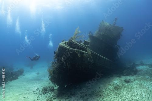 Fototapeta SCUBA Divers exploring a shipwreck in tropical waters