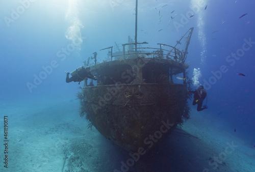 Fototapeta SCUBA divers exploring a caribbean ship wreck