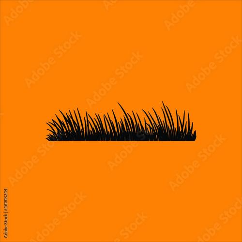 Foto Grass