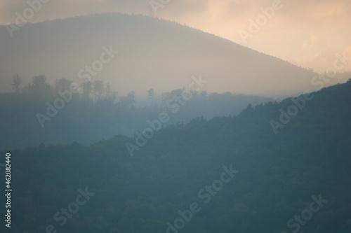 góry porośnięte lasem we mgle