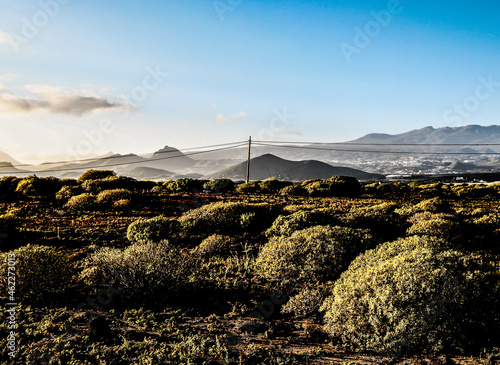 Canvas Print Landscape of a semi-desert with arid nature