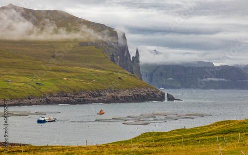 Fotografie, Obraz Faroe Islands-Vágar-Feeding the fish farm