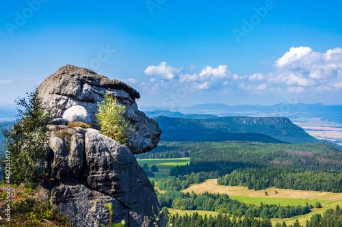 Małpa ze skały w Górach Stołowych
