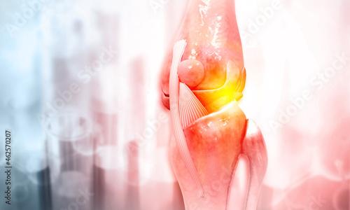 Foto Anatomy of human knee joint. 3d illustration