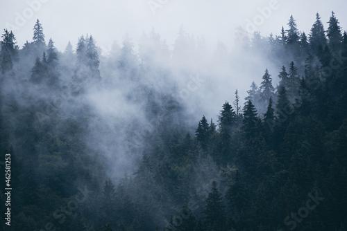 Obraz na plátně Misty mountain landscape