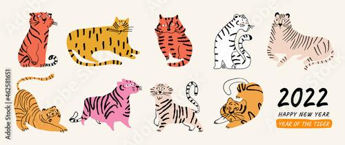 Fotografie, Obraz Cute Tiger doodle vector set
