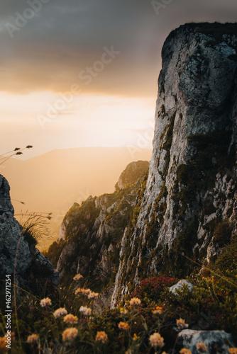 Foto Vertical shot of a landscape with rock cliffs