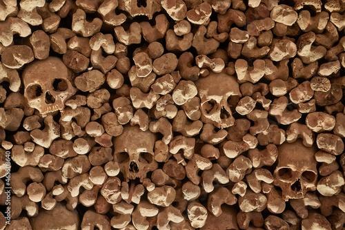 Skulls and bones in a wall Fototapete