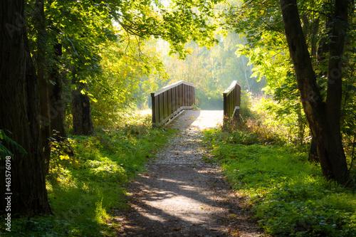 Fototapeta Brücke im Wald an zwischen Sommer und Herbst