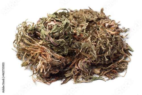 Photo white background dry dried Dandelion stem