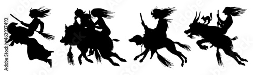 Obraz na plátne Witch flies with a broom and a dog, a goat and a boar