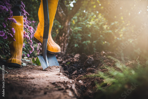 Fotografia Worker digs soil with shovel in colorful garden, agriculture concept autumn detail