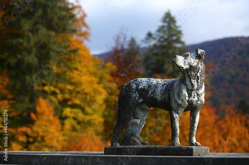 Fotografija Closeup of a dog statue, landscape park or garden classic decoration
