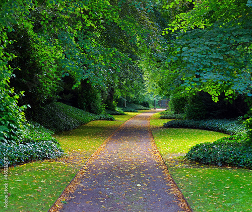 Canvas Print Tree-lined walkway at Biddulph grange in Staffordshire